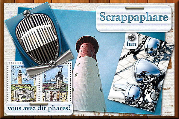 06 - Scrappaphare en février 2009 Homony11