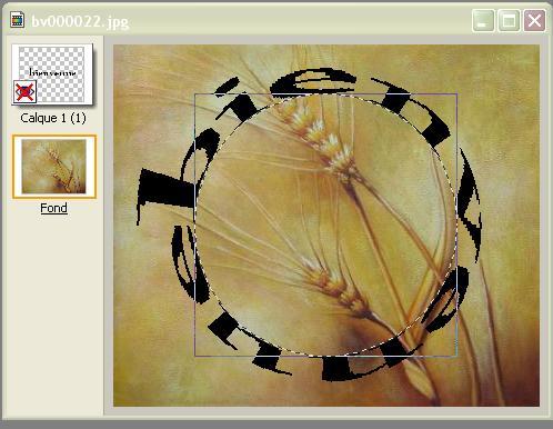 Texte en cercle Screen65