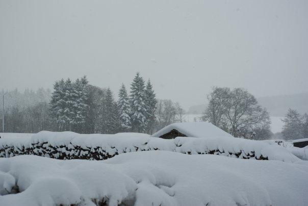Ardennes Belges au mois de Janvier 19657_12