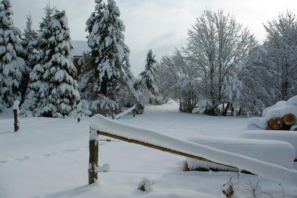 Ardennes Belges au mois de Janvier 19657_17