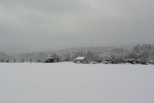 Ardennes Belges au mois de Janvier 19657_18