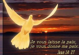 Textes Liturgiques du jour  - Page 4 Bb03jj10