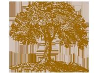 Généalogies et familles toulousaines