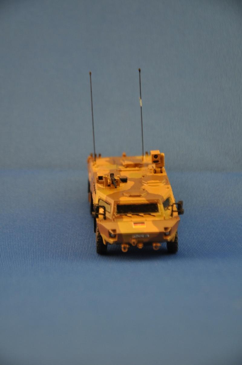 fennek 1/72 revell ISAF Dsc_0938
