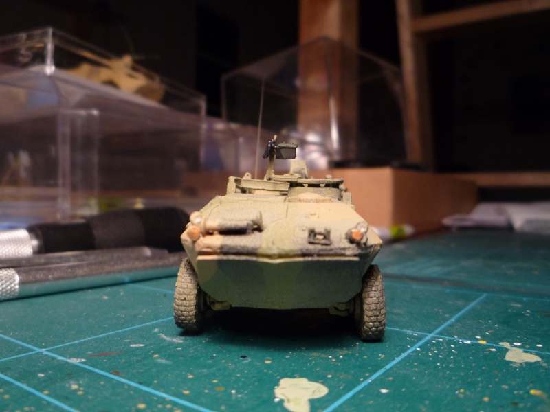 LAV recovery 1/72 ACE P1020612