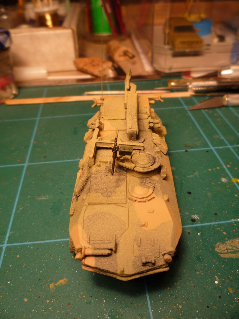 LAV recovery 1/72 ACE P1020614