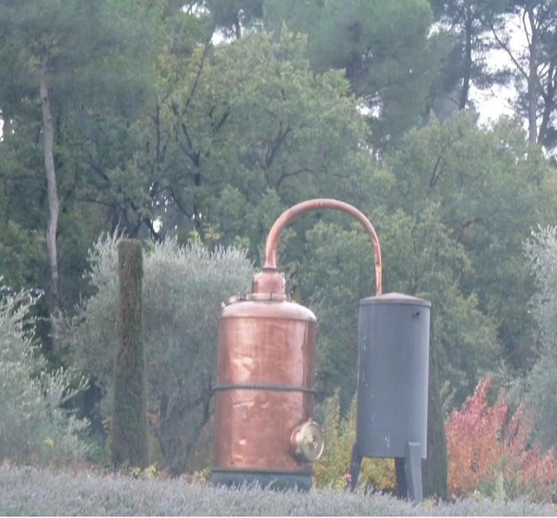 A GRASSE..... MARSEILLE CONSOLAT A  RESSENTI LE PARFUM DE LA VICTOIRE !!!! P1130019