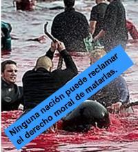Masacre contra el Delfín Calderón Calder10