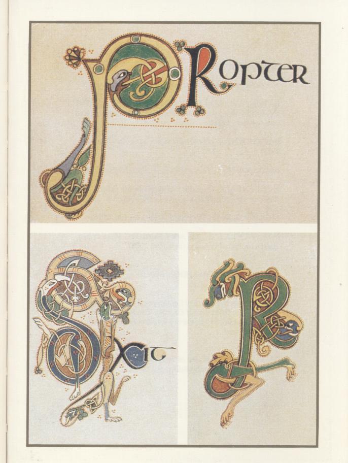 Le livre de Kells - Page 2 Livre_29