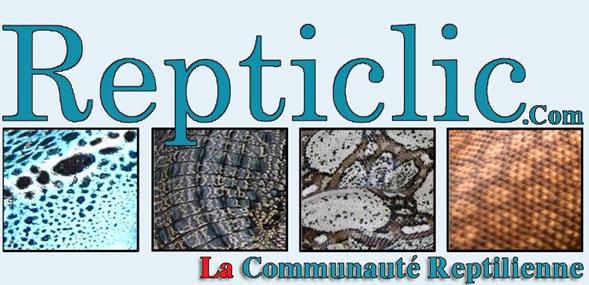 Forum Reptiles Repticlic ''LA'' communauté Reptilienne