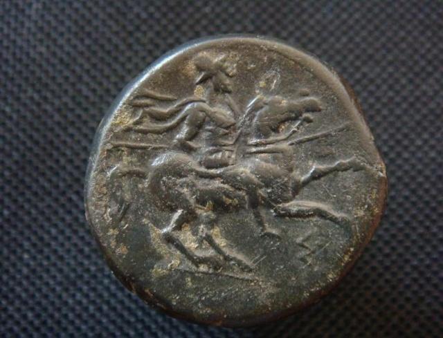 Bronze de Hiéron II de Syracuse Cavali11