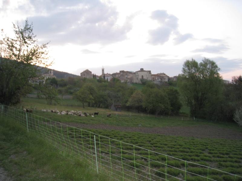 La Buiscyclette [03-05-2009] Img_2013