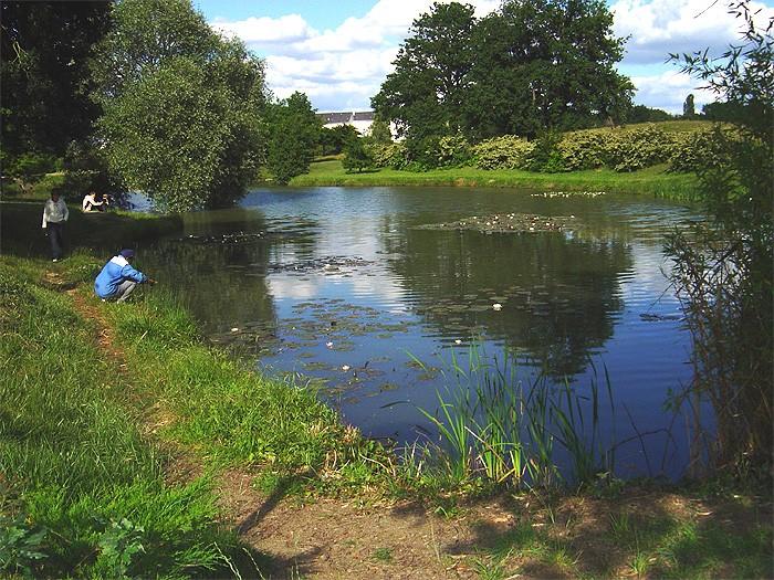 L'étang de chez moi Etangs10