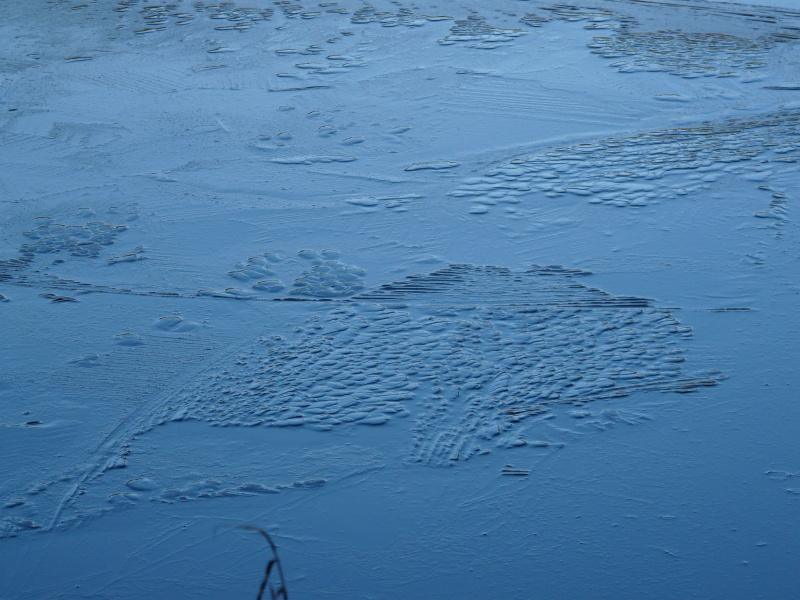 petit lac bisca moitié gélé P1130012