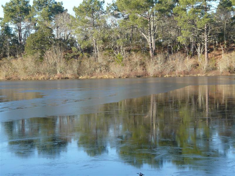 petit lac bisca moitié gélé P1130013