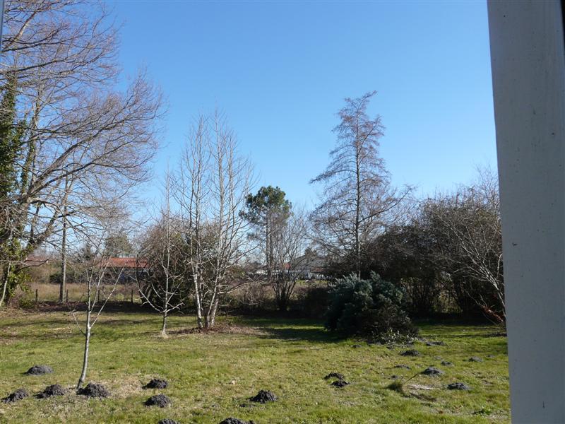 la météo du jour février, mars 2009 P1130624