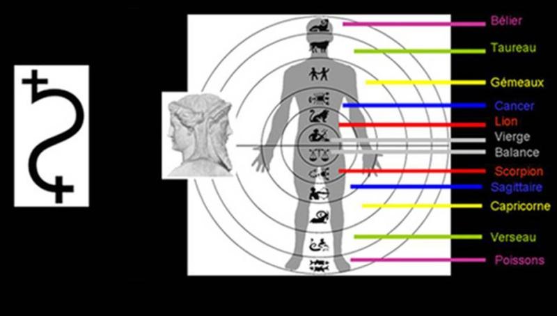 """L'Astrologie """"Speculum"""" (Miroir pour scruter les étoiles) Page_s10"""