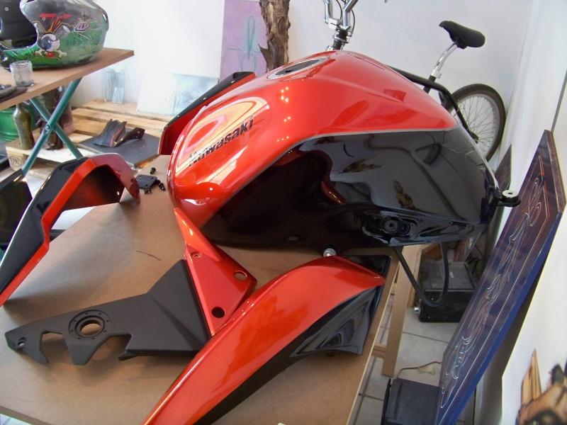 Kawasaki Z1000 100_1313