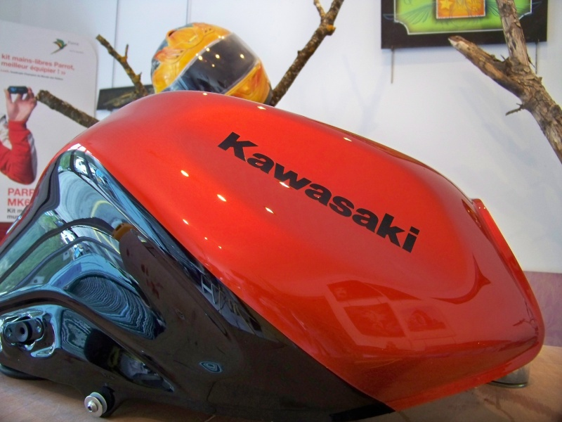 Kawasaki Z1000 100_1314