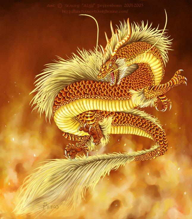 Dragons de Feu Dragon11