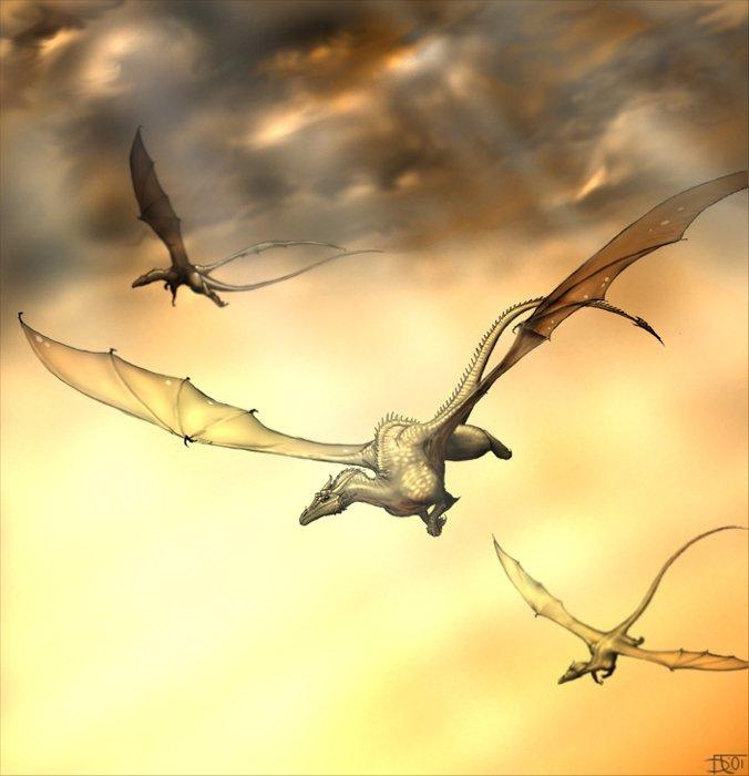 Dragons jaunes Dragon13