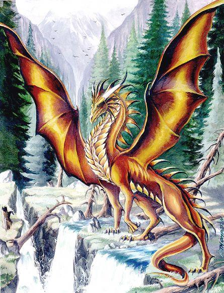 Dragons jaunes Dragon14