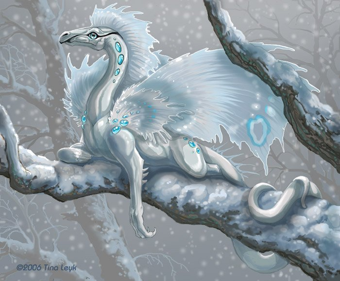Dragons blancs Dragon17