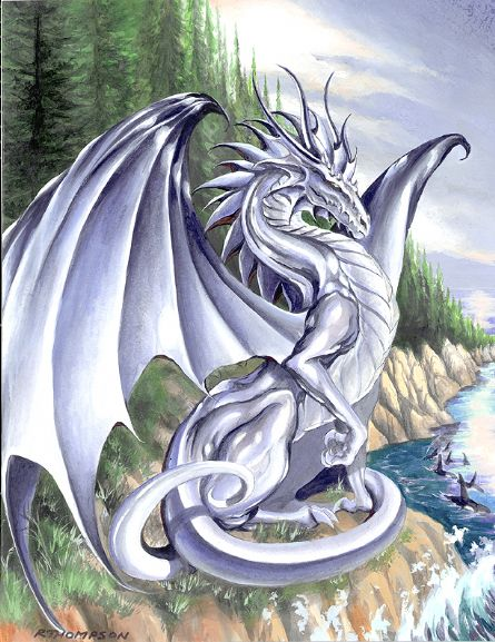 Dragons blancs Dragon19