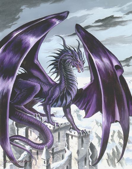 Dragons mauves Dragon21