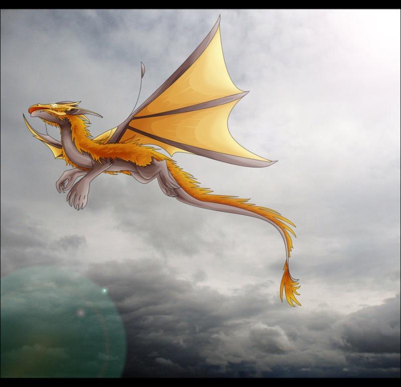 Dragons jaunes Flare_10