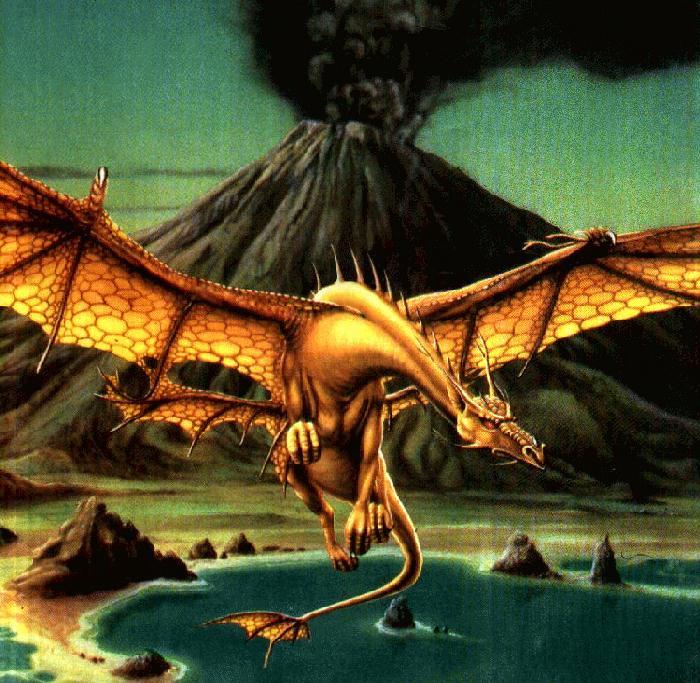 Dragons jaunes Golddr10
