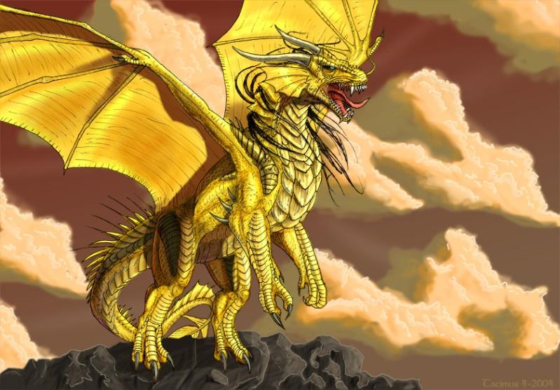 Dragons jaunes Golden12