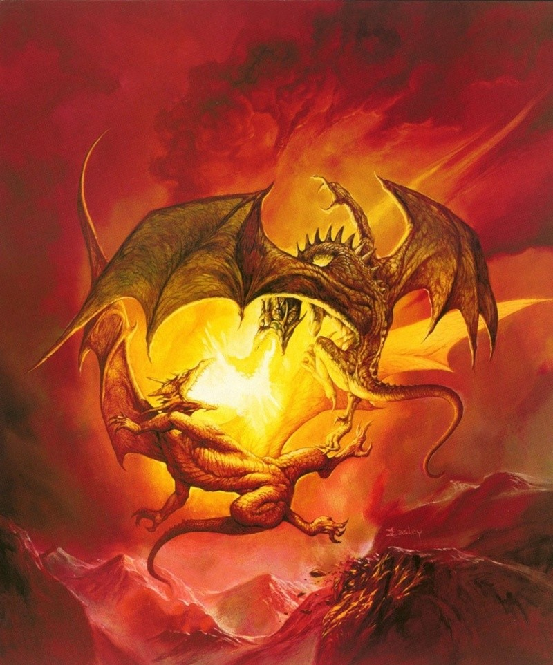 Dragons jaunes K38hjr10