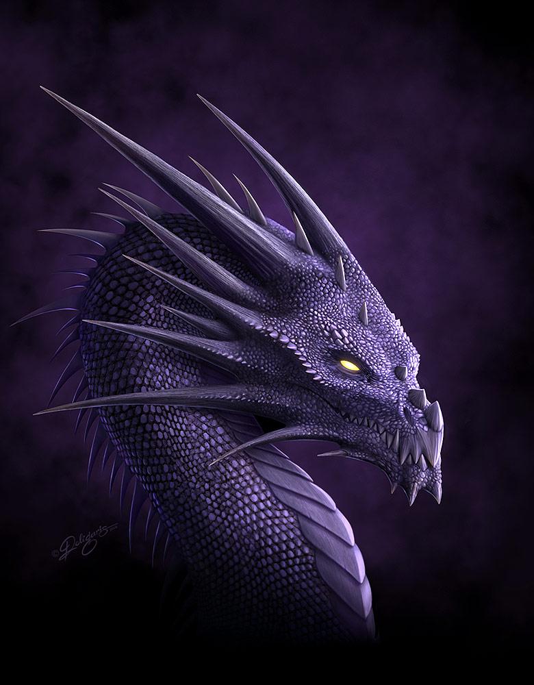 Dragons mauves Purple10