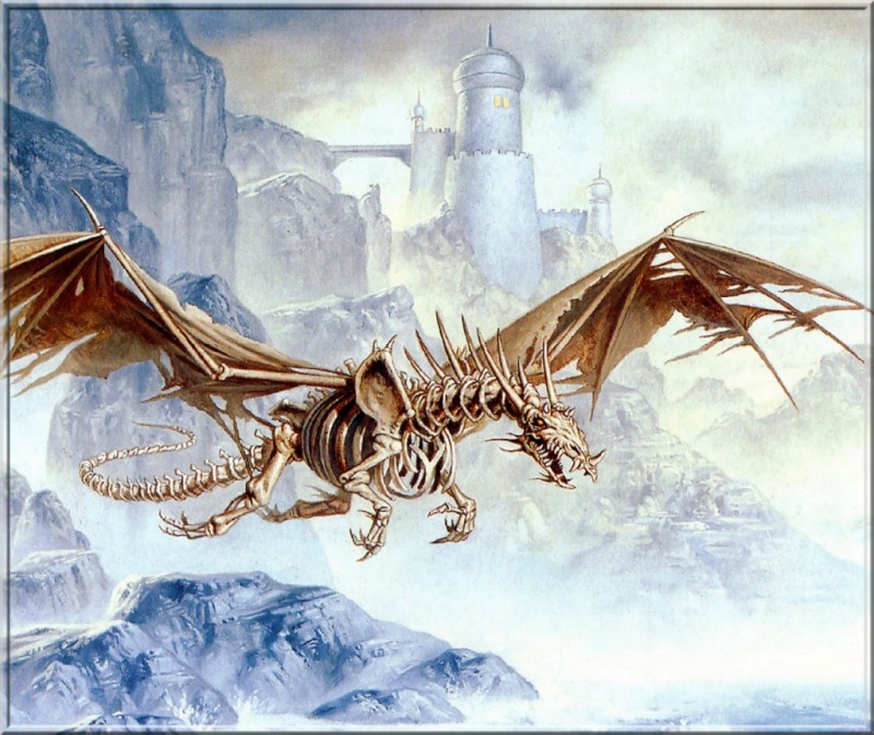 Dragons blancs R0n41910