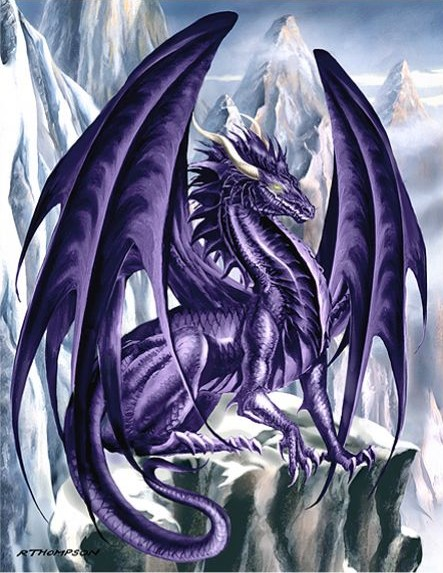 Dragons mauves Thomps10
