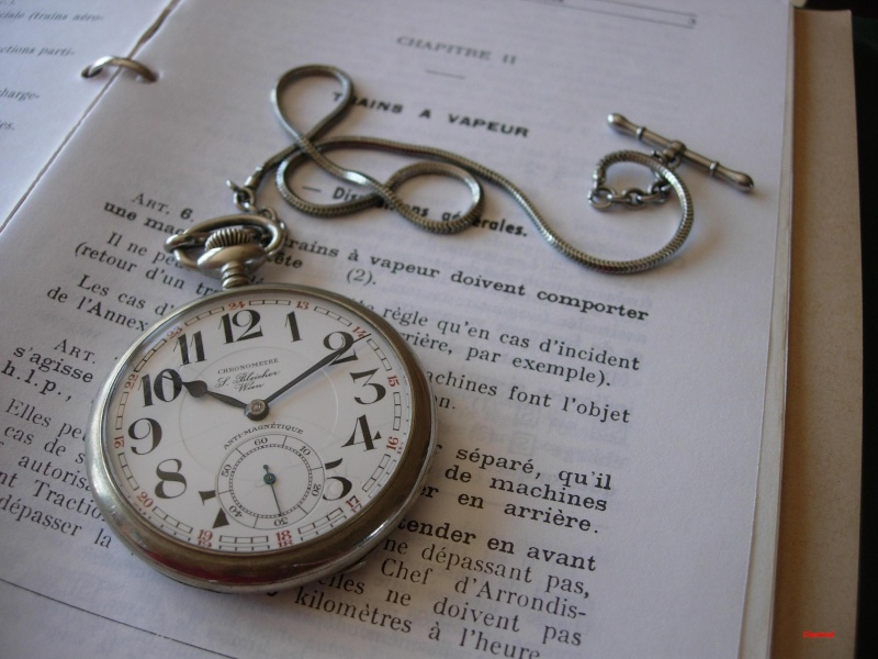Chaine pour montre Dscn4510