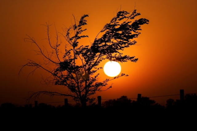 Izlazak i zalazak sunca - Page 4 Sniffi10