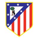 Temporada de Futbol 10/11 - Página 2 Atleti10