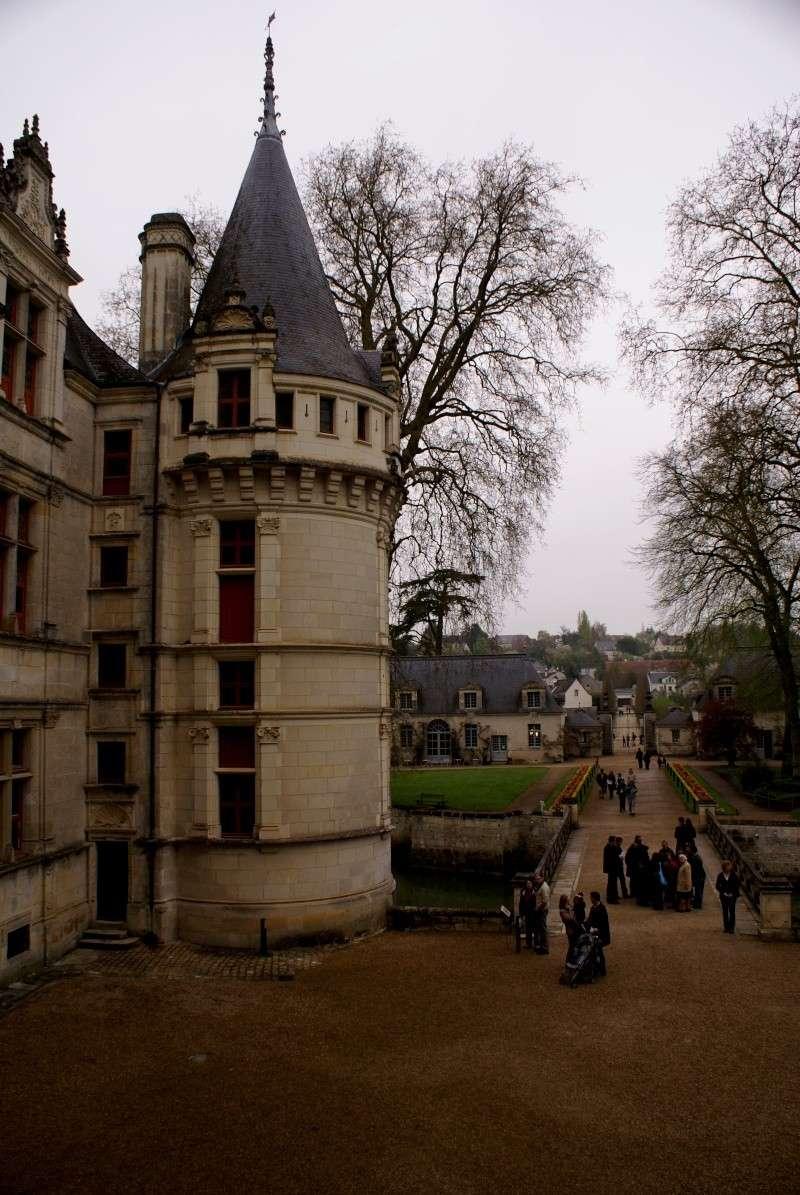 Les châteaux de la Loire - Page 5 Dsc08311