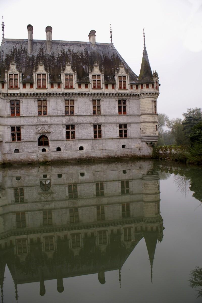 Les châteaux de la Loire - Page 5 Dsc08313