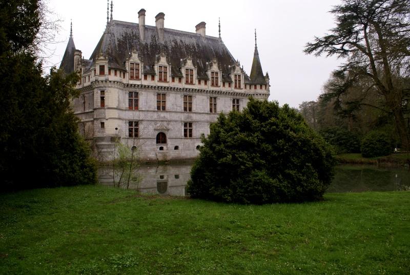 Les châteaux de la Loire - Page 5 Dsc08314