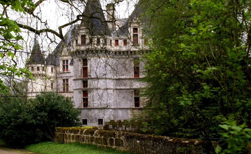 Les châteaux de la Loire - Page 5 Dsc08315