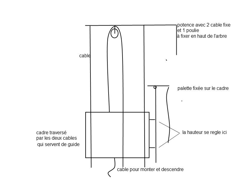 Montage pour pigeon à palette à 30 mètres Cadre10