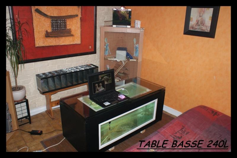 Les animaux vivant dans l'eau Table10