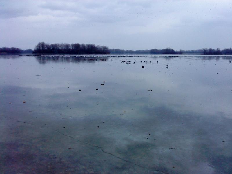 Lac de miribel Miribe10