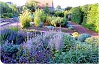 """Aider """"Les Jardins Romans"""" (71) A10"""