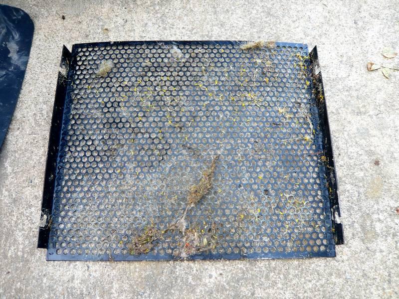 Protection d'origine du radiateur du chat P1060010