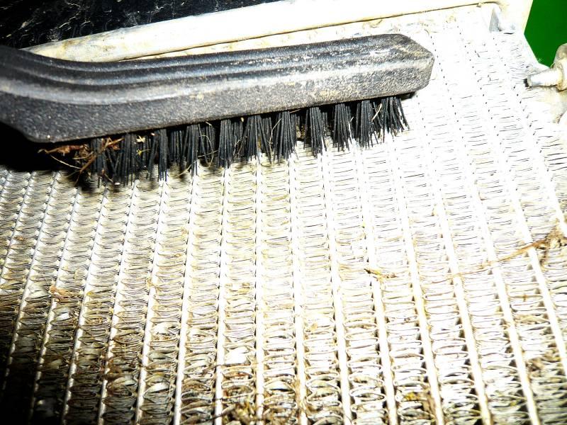 Protection d'origine du radiateur du chat P1060013