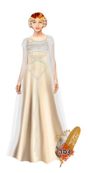 La garde robe de la baronne Robe-c27